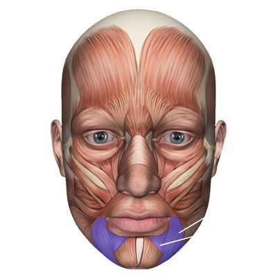 Cirurgia de paràlisi facial